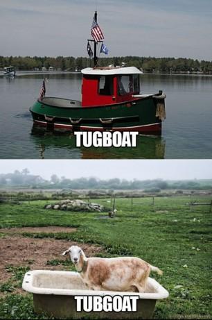 TugBoat TubGoat