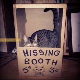 Hissing Booth!